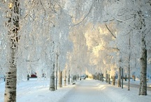 Winter / bbbrrrr .... baby it's cold outside (and I love it!)
