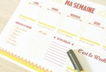 Organisation - papiers