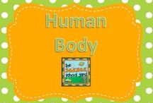 Human Body Elementary Science / Human body ideas for our FOSS unit in fourth grade...always finding activity based lessons to integrate into my road map as well as products, teaching tools, activities, and freebies as well as blog posts that can add to our unit! Making science child's play!
