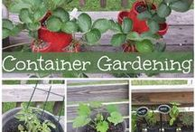 Gardening / Tip, trick, and information on how to container garden, garden in small areas, and keep a garden thriving.