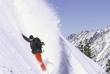 SHRED / Skiing & boarding. Fresh powder, face shots, and cruisin' the groomers - whatever your style of shredding is, we have it. The place for powder since 1971!