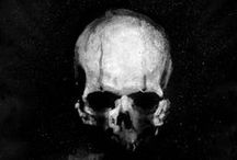 Skull Obsession / by Chandra Summers
