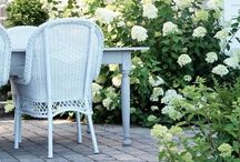 Outdoors / by Ticking and Toile