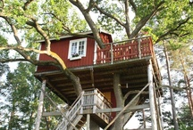 Treehouse Holidays / Discover your inner Tarzan and Jane! Here are a few of our favourite tree house holidays in Europe that can be reached by public transport. / by Greentraveller