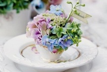 tablescapes / by Sherrie Phillips
