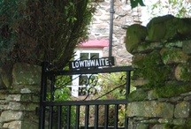 Lowthwaite, Lake District / by Greentraveller