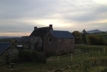 Blaentrothy Cottage / by Greentraveller