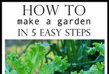 Gardening (something i should try to do.) / by Adrienne Massey (Williams)