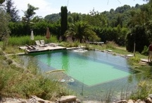 Hotels with Natural Swimming Pools / Our selection of hotels, gîtes, treehouses, agriturismos and other lovely places to stay with natural swimming pools in the UK, France, Italy, Spain and Portugal / by Greentraveller