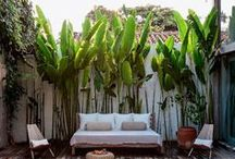 exteriors//gardens and yards / by Janelle Pietrzak