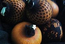 Autumnal / by Dora Munguía de Alfaro