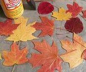 Fall-Seasonal-Misc.