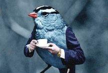 Birds in the hands..:-)