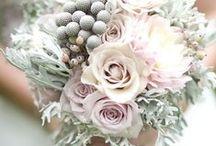 La Vie En Rose / Blush & Pink Wedding Flowers / by Elizabeth Jackson