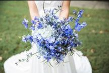 Violets Are Blue / Blue & purple wedding flowers / by Elizabeth Jackson