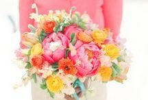 Bold Bride / Brightly colored wedding bouquets / by Elizabeth Jackson
