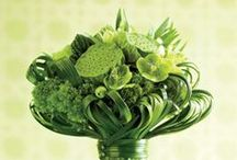 My Love Is Green / Green wedding flowers / by Elizabeth Jackson