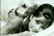 AUDREY / ❤️ Audrey Hepburn ❤️
