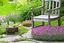 Garden Spaces / by Outdoor GreatRoom Company