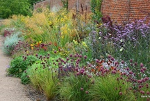 Great Gardens / by Rebecca S