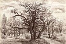 Trees, rocks, plants, landscape - Stromy, skály, rostliny, krajina / trees, rocks, plants and landscape - watercolor, pastel and drawings by Jana Haasová