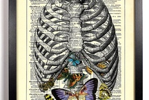 Vintage  Dictionary Prints / by StayGoldMedia