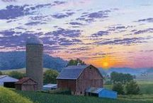 Farm Scenery / Beautiful shots of life on the #farm, from barns to livestock and crops to tractors.