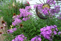 For the Garden / by Julia Belz, Realtor