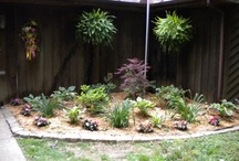 Our Outdoor Spaces / by Donna McCoy