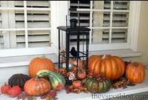 Fall Decorating / by Donna McCoy