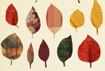 Autumn Color  / by Cailley Rose
