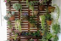 Garden / Garden things