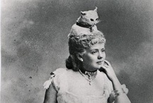 Put it on your head / hats, millinery, headdress