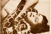 snake charmer / by Sonia Romero