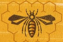 bees / by Sonia Romero