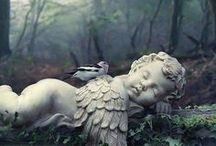 Angels  / by Ruthie Grube