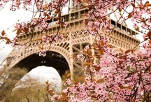 Bonjour,Toujours, L'Amour / In some way, a little and charm trip through France / by Elena Romero