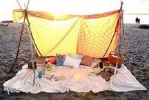 BBQs and Camping / by Ari Ana
