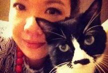My Cat: Smudge