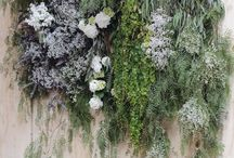Floral Installations / by Heather Edgar