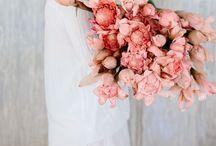 Favorite Flowers / by Heather Edgar