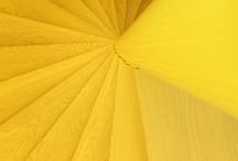 Yellow / by Jodi Been