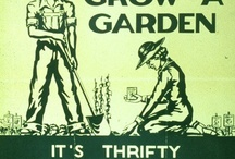 Growing your own! / Kitchen gardens, potager gardens, rasied beds for growing your own food.