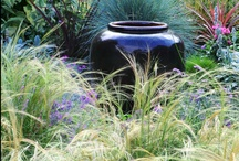Pots, urns, planters and containers! / Inspiration and ideas for creating beautiful little gardens.