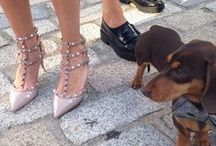 DOGGIE STYLE / Cute fashions for dogs. / by Lauren Messiah