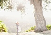 beautiful wedding photos / pretty inspiration for those must have shots.