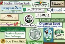 Seeds and seed catalogues : ) / Starting at the beginning!
