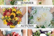 WEDDING: FLORAL/TABLE DECOR / by Kayla Czehowski