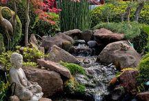 Garden ispiration