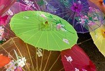 Umbrellas / by Rebecca R